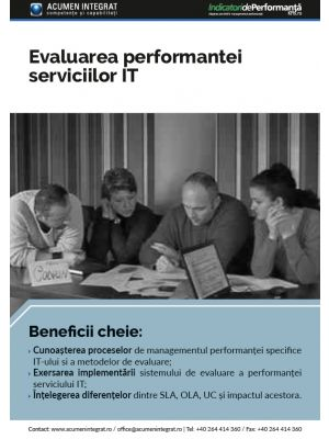 Evaluarea performantei serviciilor IT