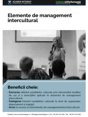 Elemente de management intercultural