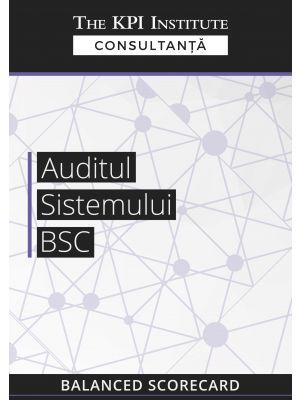 Auditul Sistemului BSC
